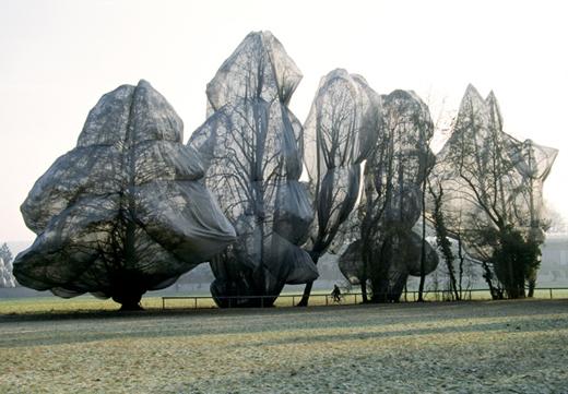 christo_wrapped_trees